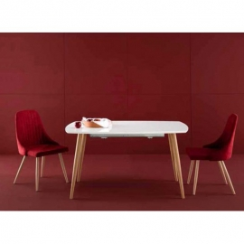 Table d'extérieur rectangulaire LENA blanc / chêne